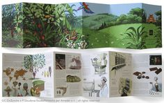 Amedei Tuscany - illustrations & graphics for a brochure