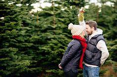 Foto para hacer tarjetas de navidad!