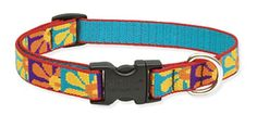 LupinePet Originals 34 Crazy Daisy 1322 Adjustable Collar for Medium and Larger Dogs *** Visit the image link more details. Note:It is affiliate link to Amazon.