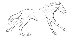 Line Art: Thoroughbred Racing by iwannabeadino.deviantart.com on @DeviantArt