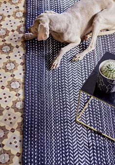 The PET rugs are real all-rounders, diversely applicable and more important: uncomplicated in its daily usage!  In the kitchen during water battles at the sink or under the table so that you can spill as much as you like.