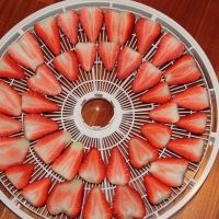 Food Dehydrator Recipes | Dehydrator Review