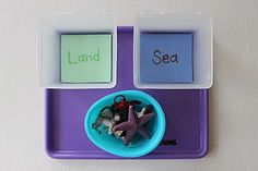 I like this basic sorting tot tray idea. Could do other opposites as well like hard and soft.