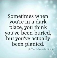 sometimes when you think you've been buried - Google Search