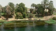Egypte - Le long du Nil - ysengrin.simplesite.com
