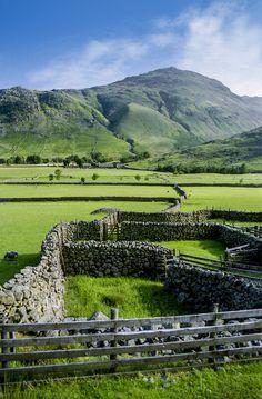The Green Green Grass of Home. The Lake District, Cumbria, England. Cumbria, England And Scotland, England Uk, Oxford England, Cornwall England, Yorkshire England, Yorkshire Dales, Travel England, London England