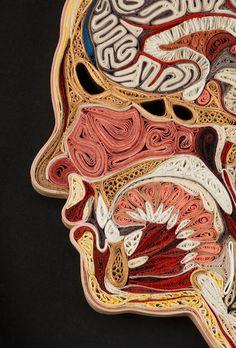 La ciencia es bella: El paisaje interno humano en papel