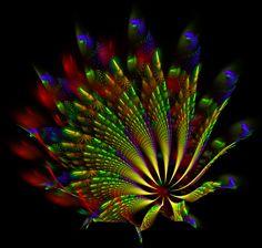 peacock wheel... by FeliFee.deviantart.com on @DeviantArt