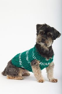 Sports Nut Dog Sweater / small & medium fits dogs 18-29 lbs./ FREE KNITTED pattern
