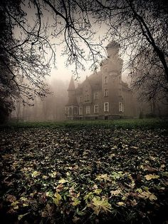 Abandoned castle in poland Abandoned Mansions, Abandoned Buildings, Abandoned Places, Beautiful Castles, Beautiful Places, Photo Chateau, Haunted Places, Spooky Places, Scenery