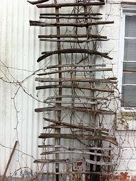 Cucumber Planter With Trellis | Arbors, Pergolas, Trellis....