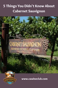 5 Things You Didn't Know About Cabernet Sauvignon