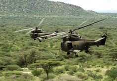 Two Royal Air Force Puma Helicopters During Ex Askari Thunder Over Kenya