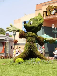 Topiary Sourcerer Mickey,