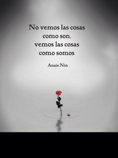 new life Anais Nin, Great Quotes, Me Quotes, Coaching, Spanish Quotes, Spanish Inspirational Quotes, More Than Words, Just In Case, Favorite Quotes