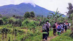 Sekolah Alam Limo, Mountains, Nature, Travel, Naturaleza, Viajes, Destinations, Traveling, Trips