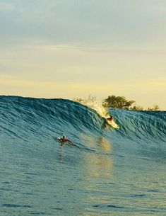 Surfing holidays is a surfing vlog with instructional surf videos, fails and big waves No Wave, Kitesurfing, E Skate, Surfing Pictures, Ocean Pictures, God Pictures, X Games, Burton Snowboards, Sea Waves