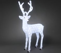 Konstsmide Acrylic 130cm Standing Reindeer with 180 White LED Lights. Elegant and poised, the perfect addition to your Winter scene.