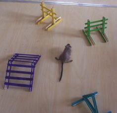 homemade gerbil toys - Google Search Gerbil agility