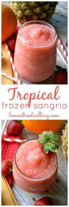 Tropical Frozen Sangria   Lemon Tree Dwelling
