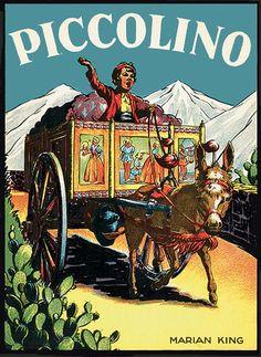 Piccolino the Sicilian Donkey