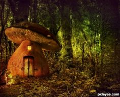 ~ Enchanted Forest ~ Mushroom home