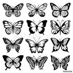 Tattoos Butterfly Vector Set - Buy this stock vector and explore similar vectors at Adob. Butterfly Vector Set - Buy this stock vector and explore similar vectors at Adobe Stock Butterfly Outline, Butterfly Stencil, Butterfly Tattoo Meaning, Butterfly Drawing, Butterfly Tattoo Designs, Butterfly Template, Butterfly Design, Butterfly Watercolor, Watercolor Design