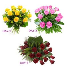 3 Days Roses Valentine Serenade : Express your everlasting love to your loved ones on special Days by sending this 3 Days Rosy Serenade which includes :  DAY-1 (12th Feb) : Bunch of 12 yellow roses, DAY-2 (13th Feb) : Bunch of 12 pink roses and DAY-3 (14th Feb) : Bunch of 12 red roses.  http://www.ghasitaramgifts.com/product/3-days-roses-valentine-serenade/