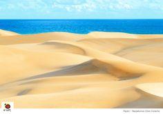 Playa de Maspalomas #spain #grancanaria