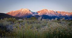 Mt. Gibbs, Mt. Dana, Sunrise Light
