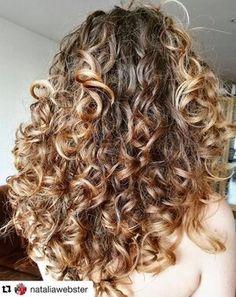 Blonde Curly Hair, Colored Curly Hair, Curly Hair Styles, Natural Hair Styles, Hair Highlights, Caramel Highlights, Caramel Hair, Fall Hair Colors, Light Brown Hair
