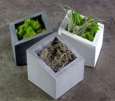 ANGL set of 3 Concrete Planters