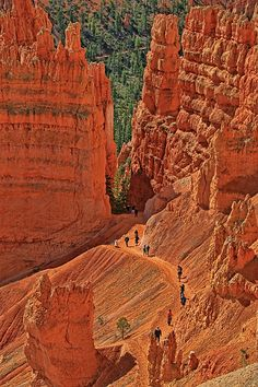 Sunrise Point Photograph - Bryce Canyon 49 - Sunrise Point by Allen Beatty