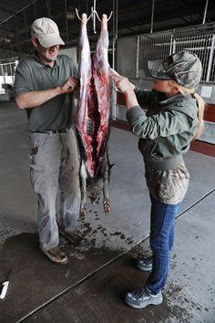 how to skin a hog.