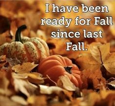 Autumn Cozy, Autumn Fall, Autumn Leaves, Winter, Autumn Scenes, Autumn Aesthetic, Happy Fall Y'all, Fall Pictures, Fall Weather