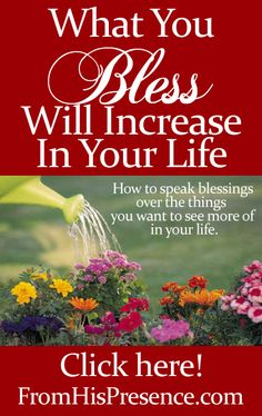 How what you bless and thank God for will increase in your life. Here's how to find the things you want more of, and speak blessings over them! #Abundance #Blessing