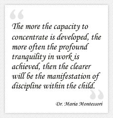 And so we must provide rich food, not too much of it, and protect the environment which encourages the child to enter into concentration. - My Pin Maria Montessori Quotes, Montessori Preschool, Montessori Education, Kids Education, Montessori Theory, Primary Education, Childhood Education, Learning Quotes, Education Quotes
