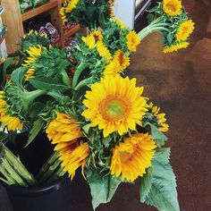 Big bouquets of sunshine.  #outwithlocals #sunflowers #flowerfriday #abmsummer