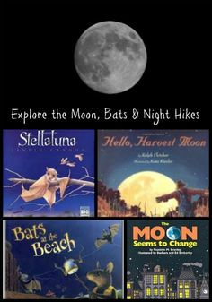 Explore bats & the moon with these fun picture books and hands-on science activities!