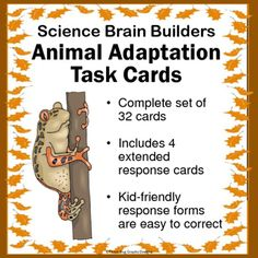 This set of 32 Animal Adaptations Task Cards gets kids thinking about how animals are adapted for their environment. Several of these animal adaptation task cards match key concepts and vocabulary that are part of many states curriculum standards.