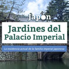Los jardines del palacio Imperial de Tokio, los forman unas grandes explanadas llenas de pinos, ciruelos, cerezos y flores.