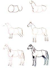Dessiner un cheval comment faire chevaux pinterest - Dessiner une chatte ...
