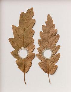 Susanna Bauer crochet leaves