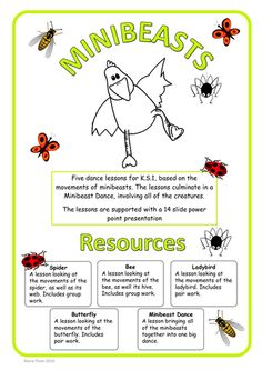 Minibeasts Dance - 5 dance lessons for K.S.1 based on minibeasts