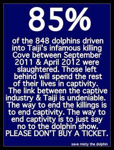 #taiji #taijidolphinslaughter #seaworld
