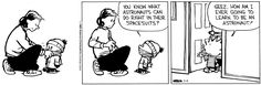 Calvin and Hobbes - do you know what astronauts can do in their space suits