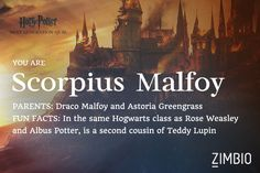 I'm Scorpius Malfoy! Which next generation 'Harry Potter' character are you? - Quiz ---------------- This is literally no surprise to me