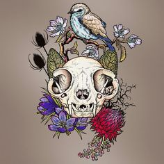 I loved drawing these Cat Skulls which I then coloured digitally. This one is a Persian Cat Skull with Persian Bird and Flowers.