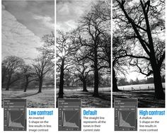 In this tutorial we reveal the best all-around Photoshop black and white conversion techniques to evoke the true magic of monochrome.