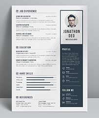Resume  Professional Resume Template Professional Resume And Cv